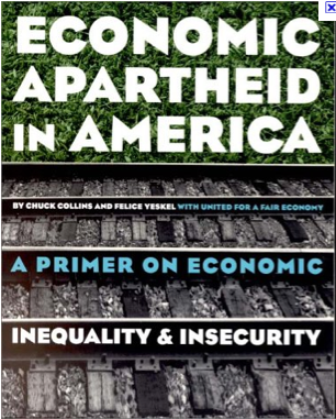 Economic Apartheid second cover