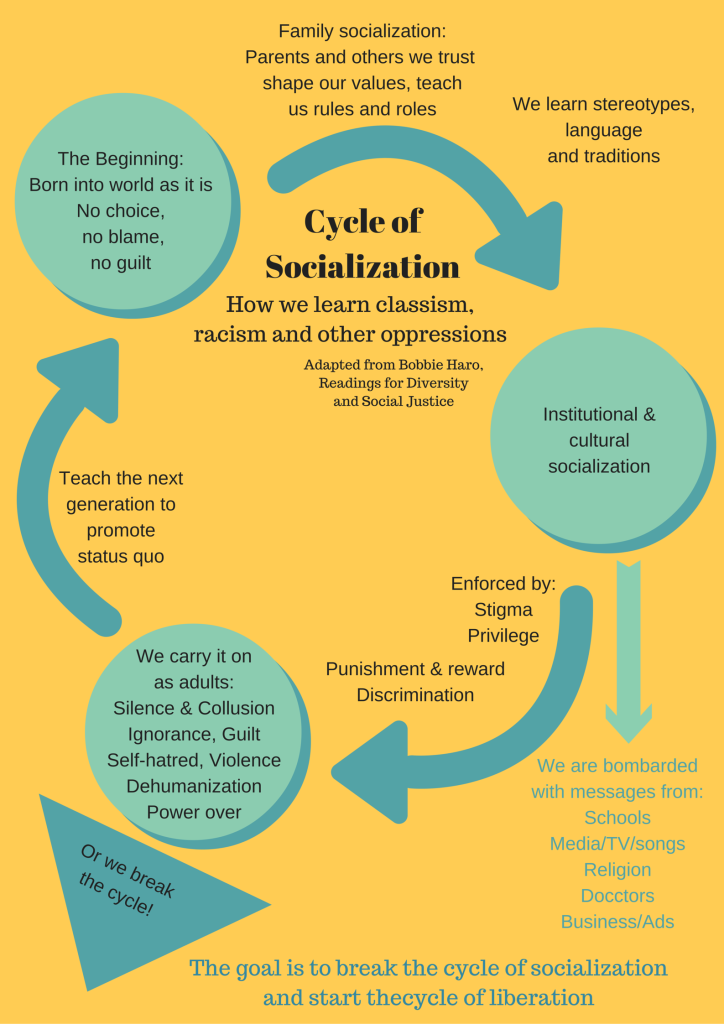 Cycle of Socialization-2