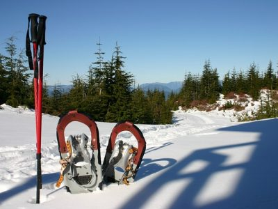 a pair of snowshoes and poles